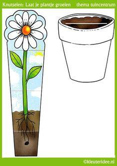 Groeiend plantje knutselen met kleuters , thema tuincentrum, kleuteridee, free p. Spring Activities, Kindergarten Activities, Activities For Kids, Crafts For Kids, Science Crafts, Science For Kids, Science Projects, Teaching Kids, Kids Learning