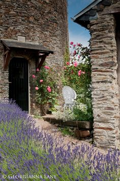 Normandy France: Lavender & roses at Le Pigeonnier (B&B), a restored dovecot on the property which is also guest accommodation: