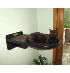 Modern Cat Furniture : Vertical Cat Wall Cat Perch