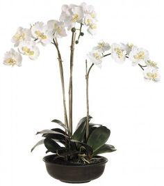 White Silk Phalaenopsis Silk Orchid Arrangement ORLHO465 #silkflowers #silkorchids