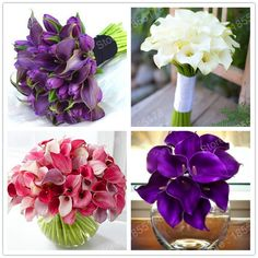 hot sale calla flower seeds rare flower plant in bonsai decoration for Home & Garden easy to plant mixed colors 200pcs/bag