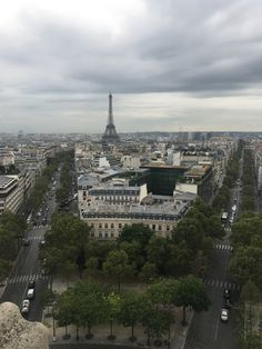 View from the Arch de Triumph   Taken by me