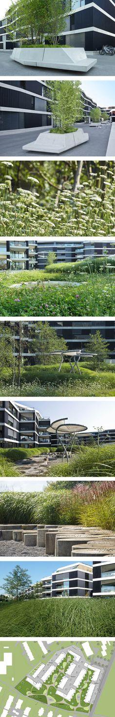 Fontana Landschaftsarchitektur - Basel - Landschaftsarchitekten  Riedpark #UrbanLandscape