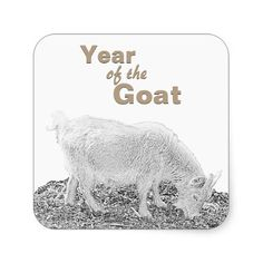 Year of the Goat Square Stickers #ChineseNewYear