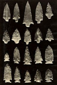 Image Detail for - ... Period projectile points from the Indian Knoll site, Ohio County, Ky