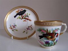 Antique Royal Worcester Bird Study Jewelled Cabinet Cup Saucer - J Hopewell 1874