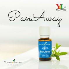A PanAway keveréket Gary Young alkotta meg a lábában található szalagok súlyos sérülését követően. Segít a normál sejtfunkció fenntartásában is. ILLÓOLAJOK: Kúszó fajdbogyó, szegfűszeg, szalmagyopár, borsmenta Helichrysum Italicum, Circulatory System, Young Living Essential Oils, Peppermint, Muscles, Pure Products, Mint, Muscle