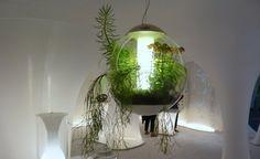 Vous aimez la nature ?  un petit coin de bonheur rien que pour vous ! #green #bonheur #cool