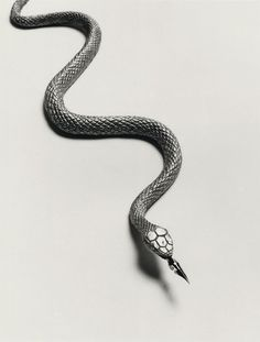 by the Spanish visual poet Chema Madoz Conceptual Photography, Creative Photography, Art Photography, Poema Visual, Garcia Alix, Serpent Snake, Dada Art, Surreal Photos, 2d Design