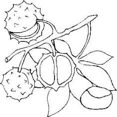 castanha em em desenho para colorir - Pesquisa Google