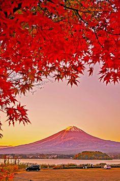 #Japan #Fuji