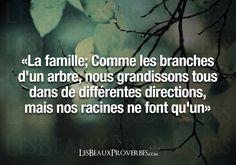 Les Beaux Proverbes – Proverbes, citations et pensées positives ». So true!!  Aline ♥ family quotes