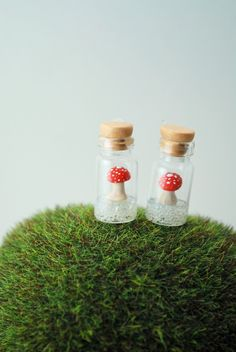 Home › DIVINEsweetness › e a r r i n g  Floating Toadstool Mushrooms. Handmade Miniature Polymer Clay Woodland Jewelry.