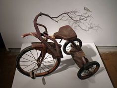 """I couldn't find a title but I decided to call it """"Barkcycle""""   by: Sheila Ghidini"""
