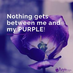 Purple Quotes Pinadrienne Mon Purple Addiction  Pinterest  Passion