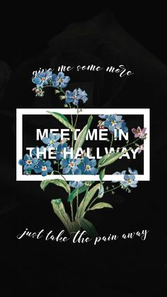 Meet Me in the Hallway~ Harry Styles
