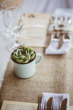 succulent in an enamel mug.How I will sell the enamel mugs at the Christmas show. Succulent Wedding Favors, Succulent Centerpieces, Shed Wedding, Farm Wedding, African Christmas, Protea Wedding, Christmas Shows, Christmas Table Settings, Table Arrangements
