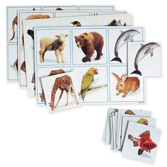 Maxilotto Animals