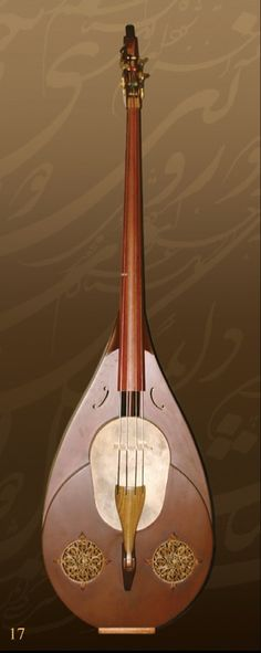 A new Iranian musical instrument, a member of the family of Bowing string instruments, developed by the Iranian musician M. R. Shajarian.
