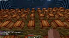 Minecraft Skyblock nel server SkyRealms #1