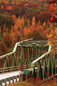 Looking for a weekend getaway from Dallas? Take a scenic drive to northwest Arkansas where fall is in full force around the Ozark National Forest. Weekend Getaways From Dallas, Ozark National Forest, Arkansas Usa, Arkansas Razorbacks, We Will Rock You, Fall Pictures, The Great Outdoors, South Carolina, Places To Go