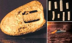 Is this a 300 million-year-old SCREW? #DailyMail | See this & more at: http://twodaysnewstand.weebly.com/mail-onlinecom