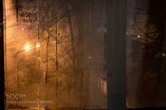 IMG_1368-2.jpg by AstaStanislavovna
