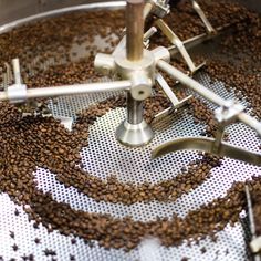 THESE ARE THE 15 BEST NEW COFFEE ROASTERS IN AMERICA - Coffee fiends are always looking for a new buzz. Here are 15 of the best.
