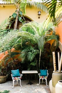 Casa Bella Boutique Hotel Cabo San Lucas (scheduled via http://www.tailwindapp.com?utm_source=pinterest&utm_medium=twpin)
