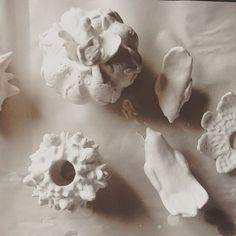 Белые, хрустящие, самые настоящие,пока как зефирки, но скоро будут как блестящие карамельки, наши цветочки подрастают :)