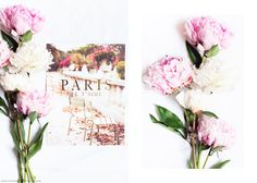 Paris Prints by SS Print Shop and Carin Olsson