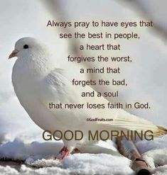 Good morning sister have a nice day 💝💖🌞💋 Morning Prayer Quotes, Good Morning Friends Quotes, Good Morning Beautiful Quotes, Good Morning Prayer, Good Morning Inspirational Quotes, Morning Greetings Quotes, Morning Blessings, Morning Prayers, Good Morning Messages