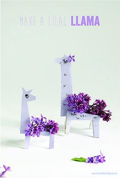 Lilac Llamas