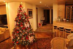 Berenice Gazoni. Montagem e Desmontagem de árvore de Natal