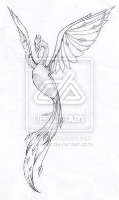 Tattoo design phoenix