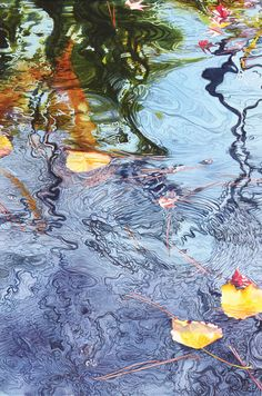 Demo: Soon Y. Warren's Koi Pond-Yellow Leaves (watercolor, 22×15). Watch the video pin as well to get the full picture.