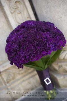Purple Carnation Bouquet