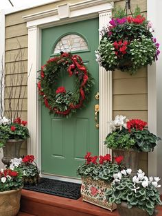 Winter color to welcome guests - garden inspiration / Pike Nurseries