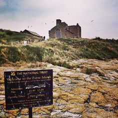 Farne Islands in Seahouses, Northumberland #GreatBritishGetaway #Joules.
