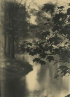 gypsji:  Unknown photographer, Leafs and reflection, 1920, Belgium