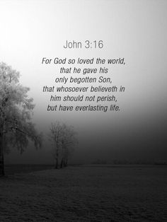 John 3:16 (1611 KJV!!!)  Every Christian should know this verse by heart so we can tell other people that need to be saved, The first bible verse I learned as a little girl; love this verse!