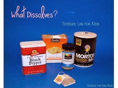 What Dissolves? Science Lab (from Science for Kids)