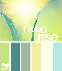 I love this range of hues. A whole house could be done in this--the dark teal in a bedroom, the melon green in the kitchen, the sage in a bathroom, the sunny yellow in a dining room and the aqua in a family room.