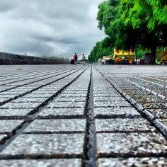 Día lluvioso en Costanera Sur.. #camino #elcamino #caminodesantiago #buencamino #caminofrances #caminos #CaminoReal #caminobrands #EnElCamino #caminodesantiagopage #CaminoAEsparta #elcaminodesantiago #siguetucamino #correcaminos #caminantenohaycamino #konicaminolta #bebeencamino #MarcandoCamino #decaminopalacima #caminodelnorte #decamino #caminosantiago #sehacecaminoalandar #recorriendocaminos #CaminoAlExito #caminowts #elcaminotravel #elcaminocollege #uncaminohaciaeldestino…