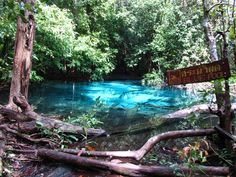 Blue Pool in #Krabi **For a detailed guide including the cost of travel in #Thailand, including travel, accommodation, transport, food, nightlife and sightseeing click here: http://gobackpacking.com/travel-guides/thailand/money-costs/