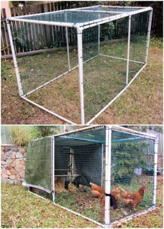 Build your own cheap chicken tractor using PVC Pipe, Check these 10 free DIY PVC chicken tractor plans to make a portable chicken tractor! Easy Chicken Coop, Diy Chicken Coop Plans, Chicken Pen, Chicken Feeders, Chicken Coop Designs, Backyard Chicken Coops, Building A Chicken Coop, Chickens Backyard, Chicken Run Ideas Diy