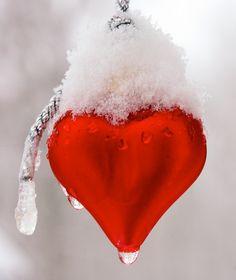 Love, Snow!