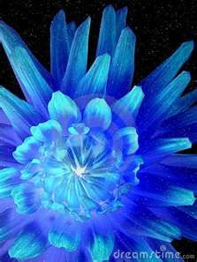 luminous neon flower
