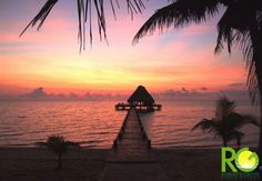 CHECK OUT Roberts Grove Beach Resort (less expensive than Turtle Inn) Placencia Village, Placencia, > Belize Belize Hotels, Belize City, Fun Places To Go, Romantic Destinations, Vacation Spots, Vacation Ideas, Central America, Beach Resorts, Trip Advisor