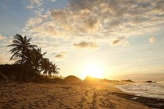 Top 5 Photos of Royal Isabela, Puerto Rico